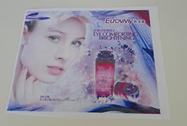 Bandiera Flag in tessuto stampata con stampante eco solvente da 1,6 m (5 piedi) WER-ES160 4