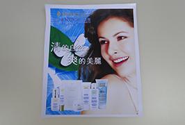 Banner in PVC stampato con stampante eco solvente da 3,2 m (10 piedi) WER-ES3201