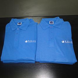 Esempio di stampa personalizzata di polo con stampa t-shirt A3 WER-E2000T